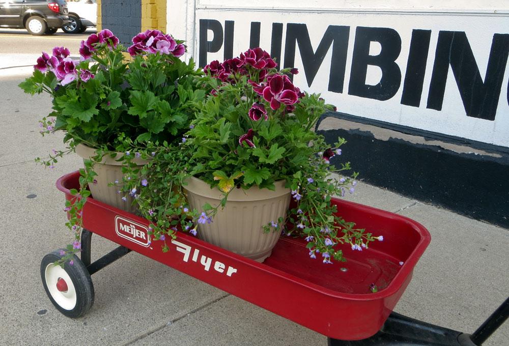 photo of the week flower day at eastern market in detroit. Black Bedroom Furniture Sets. Home Design Ideas